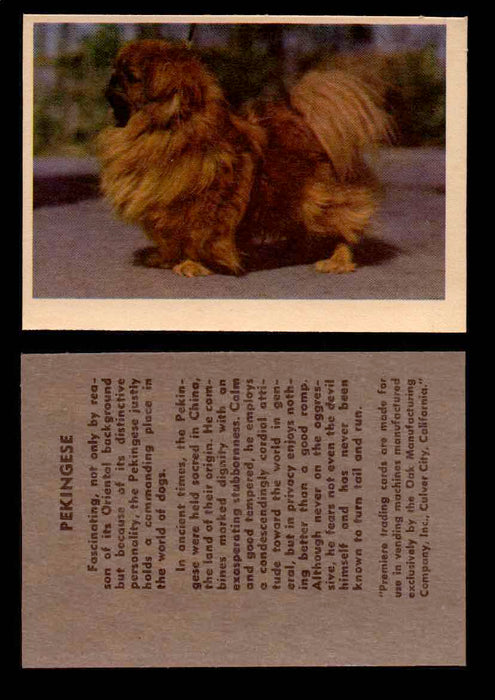 1957 Dogs Premiere Oak Man. R-724-4 Vintage Trading Cards You Pick Singles #1-42 #30 Pekingese  - TvMovieCards.com