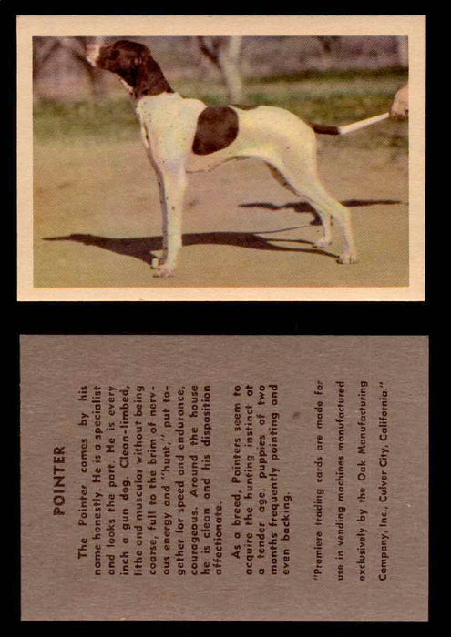 1957 Dogs Premiere Oak Man. R-724-4 Vintage Trading Cards You Pick Singles #1-42 #31 Pointer  - TvMovieCards.com