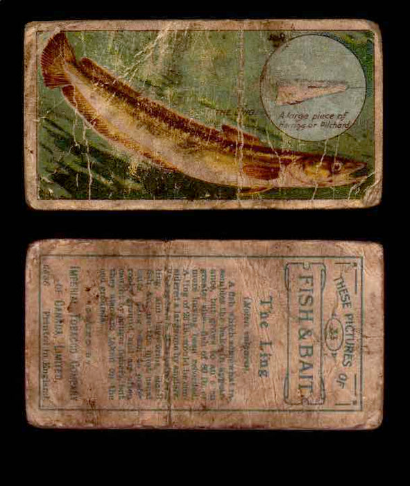 1910 Fish and Bait Imperial Tobacco Vintage Trading Cards You Pick Singles #1-50 #33 The Ling  - TvMovieCards.com