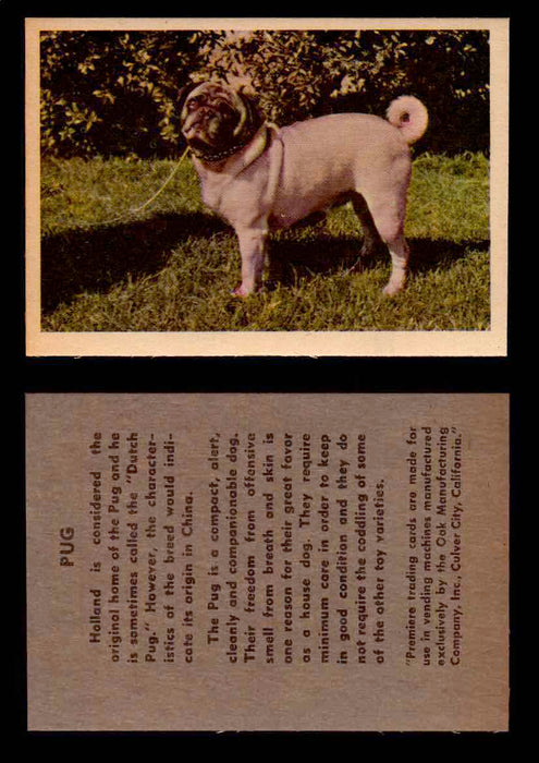 1957 Dogs Premiere Oak Man. R-724-4 Vintage Trading Cards You Pick Singles #1-42 #34 Pug  - TvMovieCards.com
