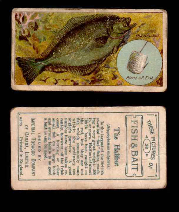 1910 Fish and Bait Imperial Tobacco Vintage Trading Cards You Pick Singles #1-50 #38 The Halibut  - TvMovieCards.com