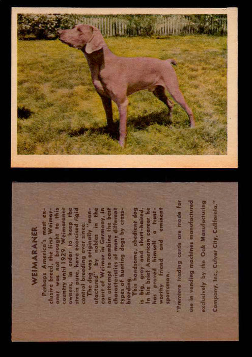 1957 Dogs Premiere Oak Man. R-724-4 Vintage Trading Cards You Pick Singles #1-42 #39 Weimaraner  - TvMovieCards.com