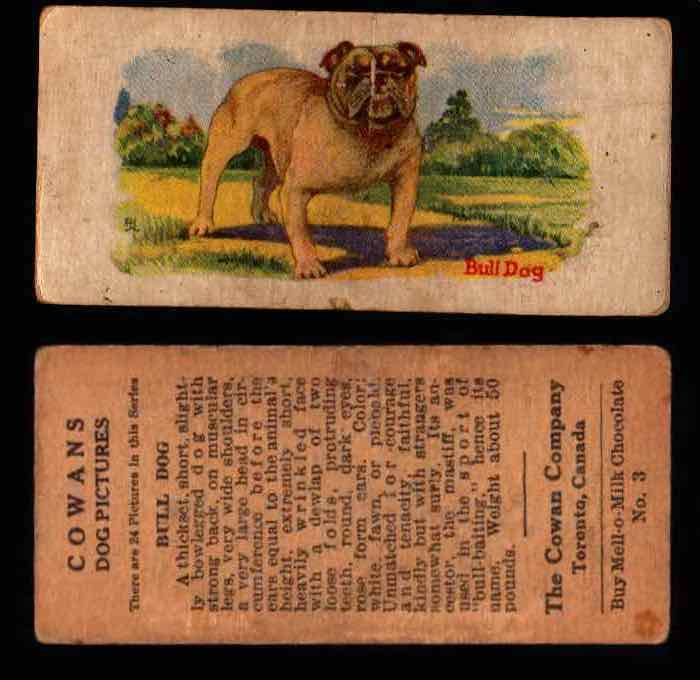 1929 V13 Cowans Dog Pictures Vintage Trading Cards You Pick Singles #1-24 #3 Bull Dog  - TvMovieCards.com