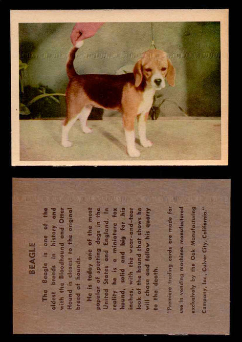 1957 Dogs Premiere Oak Man. R-724-4 Vintage Trading Cards You Pick Singles #1-42 #3 Beagle  - TvMovieCards.com