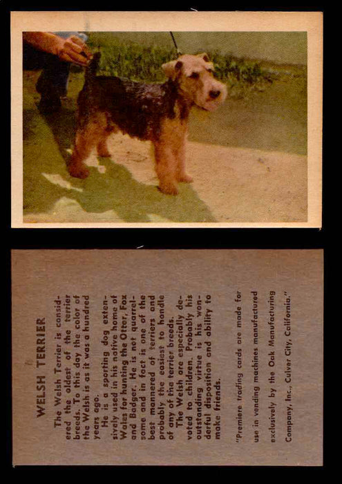 1957 Dogs Premiere Oak Man. R-724-4 Vintage Trading Cards You Pick Singles #1-42 #40 Welsh Terrier  - TvMovieCards.com