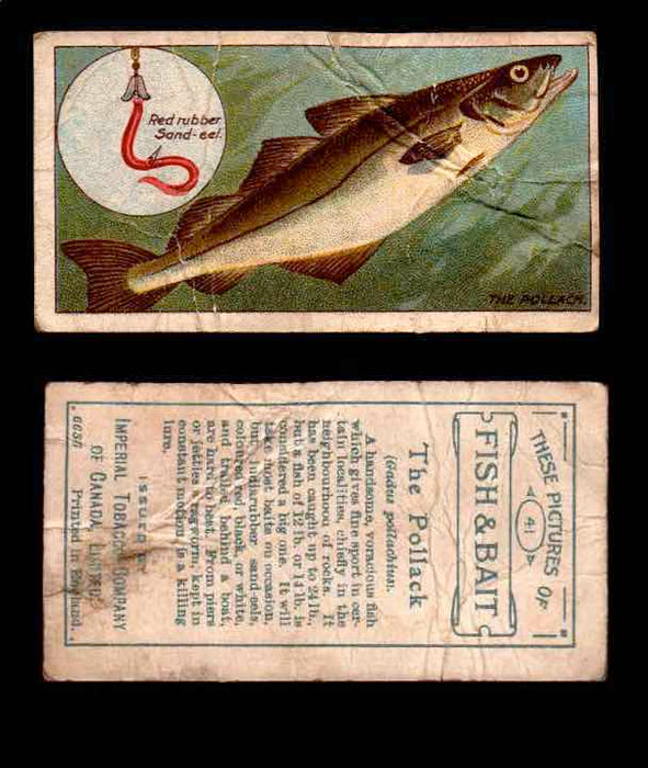 1910 Fish and Bait Imperial Tobacco Vintage Trading Cards You Pick Singles #1-50 #41 The Pollack  - TvMovieCards.com