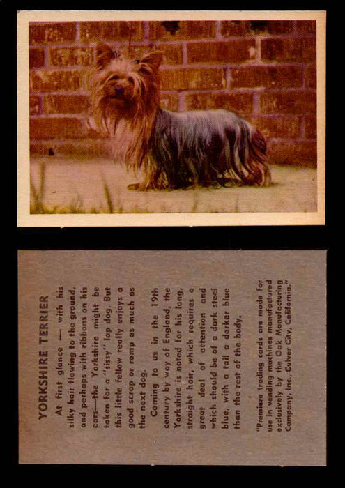 1957 Dogs Premiere Oak Man. R-724-4 Vintage Trading Cards You Pick Singles #1-42 #42 Yorkshire Terrier  - TvMovieCards.com