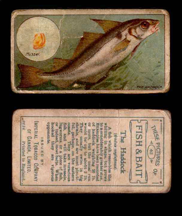 1910 Fish and Bait Imperial Tobacco Vintage Trading Cards You Pick Singles #1-50 #42 The Haddock  - TvMovieCards.com