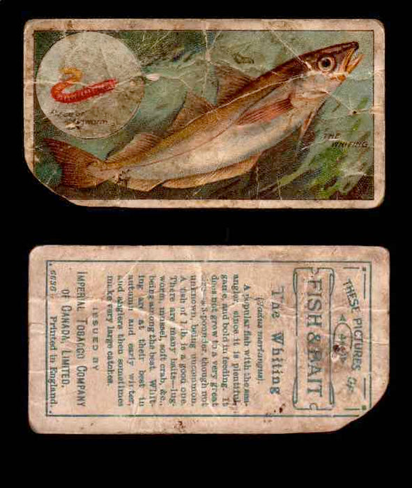 1910 Fish and Bait Imperial Tobacco Vintage Trading Cards You Pick Singles #1-50 #44 The Whiting  - TvMovieCards.com