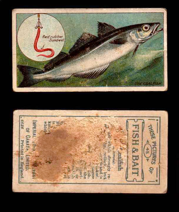 1910 Fish and Bait Imperial Tobacco Vintage Trading Cards You Pick Singles #1-50 #45 The Coalfish  - TvMovieCards.com