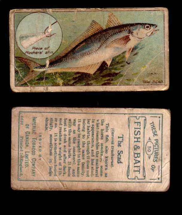 1910 Fish and Bait Imperial Tobacco Vintage Trading Cards You Pick Singles #1-50 #50 Sead  - TvMovieCards.com