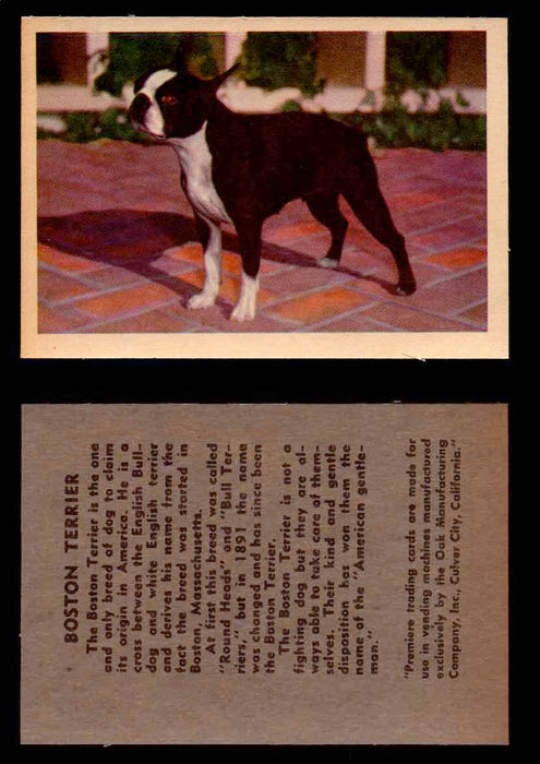 1957 Dogs Premiere Oak Man. R-724-4 Vintage Trading Cards You Pick Singles #1-42 #5 Boston Terrier  - TvMovieCards.com