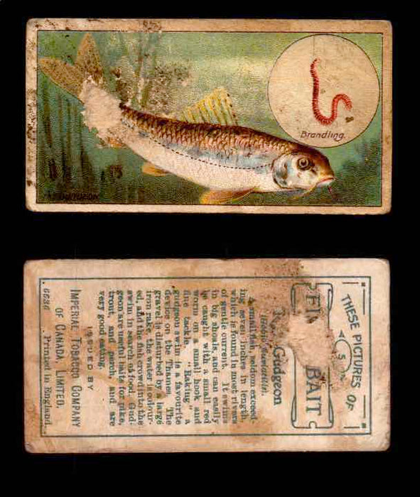 1910 Fish and Bait Imperial Tobacco Vintage Trading Cards You Pick Singles #1-50 #5 The Gudgeon  - TvMovieCards.com