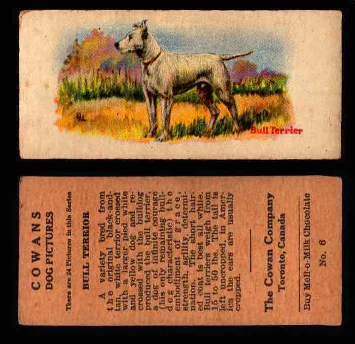 1929 V13 Cowans Dog Pictures Vintage Trading Cards You Pick Singles #1-24 #6 Bull Terrior  - TvMovieCards.com