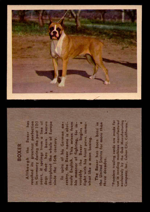 1957 Dogs Premiere Oak Man. R-724-4 Vintage Trading Cards You Pick Singles #1-42 #6 Boxer  - TvMovieCards.com