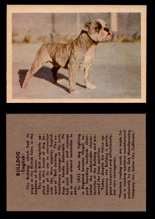 1957 Dogs Premiere Oak Man. R-724-4 Vintage Trading Cards You Pick Singles #1-42 #7 English Bulldog  - TvMovieCards.com