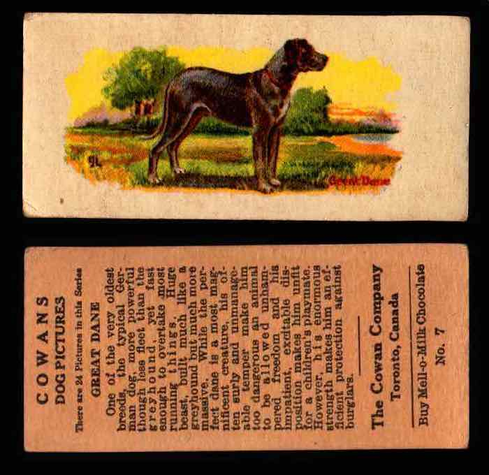 1929 V13 Cowans Dog Pictures Vintage Trading Cards You Pick Singles #1-24 #7 Great Dane  - TvMovieCards.com
