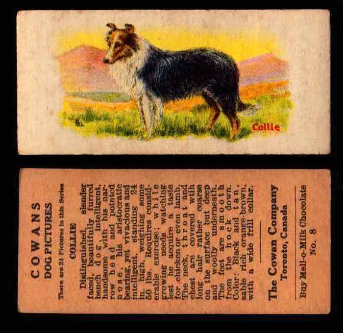 1929 V13 Cowans Dog Pictures Vintage Trading Cards You Pick Singles #1-24 #8 Collie  - TvMovieCards.com