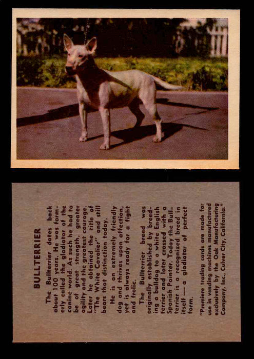 1957 Dogs Premiere Oak Man. R-724-4 Vintage Trading Cards You Pick Singles #1-42 #8 Bullterrier  - TvMovieCards.com