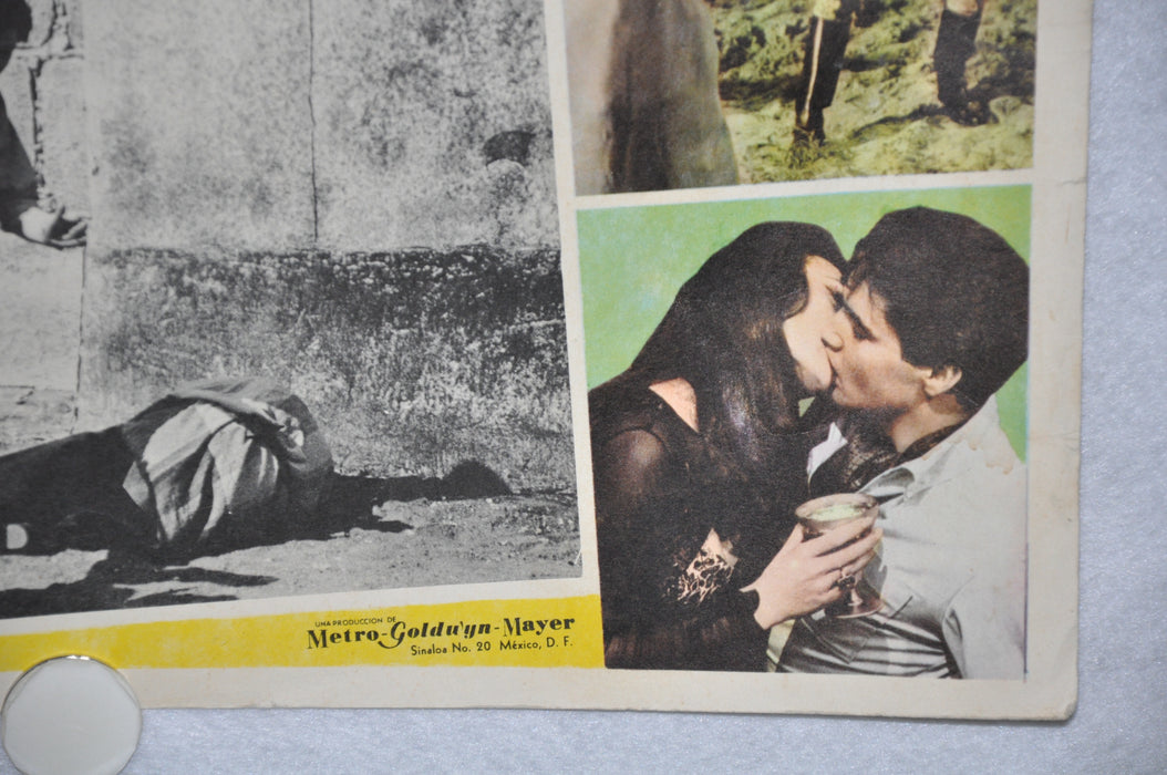 Harum Scarum 1965 Mexican Lobby Card Movie Poster Elvis Presley #3   - TvMovieCards.com