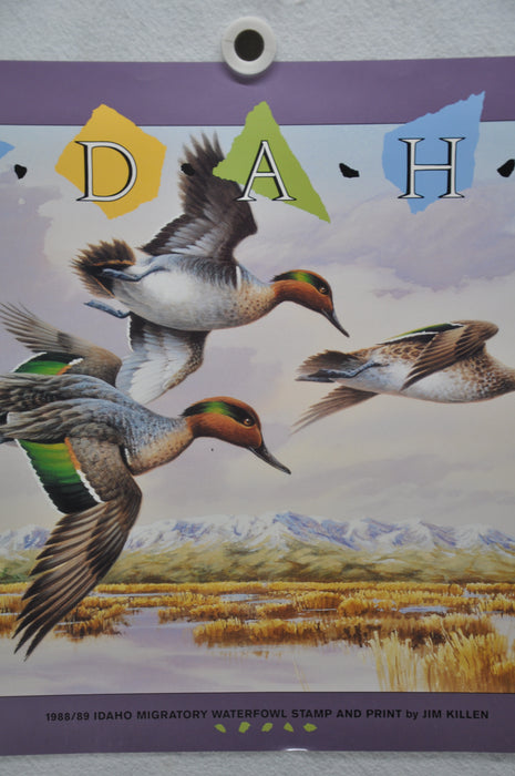 Jim Killen Idaho #2 1988 State Duck Stamp Green Winged Teal Print Poster 18 x 24   - TvMovieCards.com