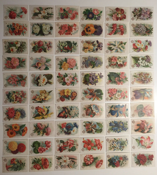 Beautiful Flowers New Series 60 Card Set Arm & Hammer 1888 J16  Church & Co.   - TvMovieCards.com