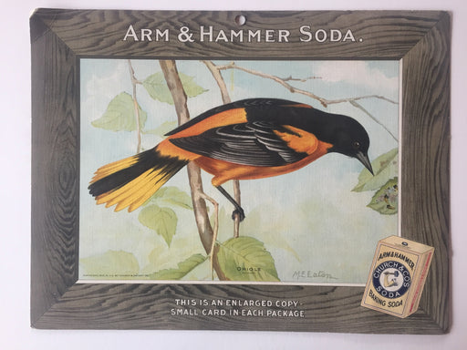 Birds - Arm & Hammer Advertising Store Display Card Sign - Oriole  J5   - TvMovieCards.com