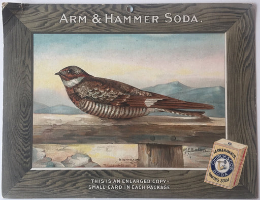 Birds - Arm & Hammer Advertising Store Display Card Sign - Nighthawk J9   - TvMovieCards.com
