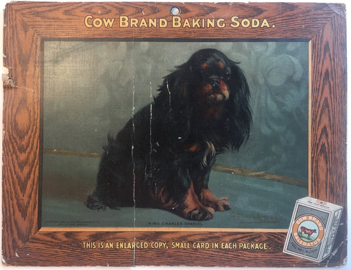 Dogs New Series - Cow Baking Soda Store Display Card Sign - Prince Charles Spani   - TvMovieCards.com