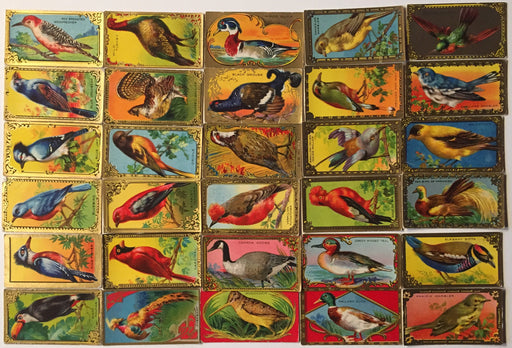 1910 Game Bird Series C14 Imperial Tobacco Vintage Trading Card Set 30 cards   - TvMovieCards.com