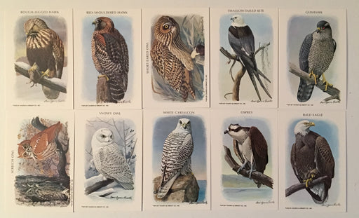 Birds of Prey Series 1 Vintage Card Set 1975 Church & Dwight Co., Inc.   - TvMovieCards.com