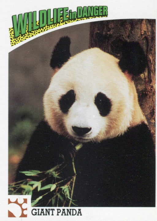 Wildlife in Danger Animal Animals Base Card Set 100 Cards Action 1992   - TvMovieCards.com