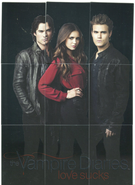 2016 Vampire Diaries Season 4 Silver Foil Parallel Trio Puzzle Chase Set H1-H9   - TvMovieCards.com