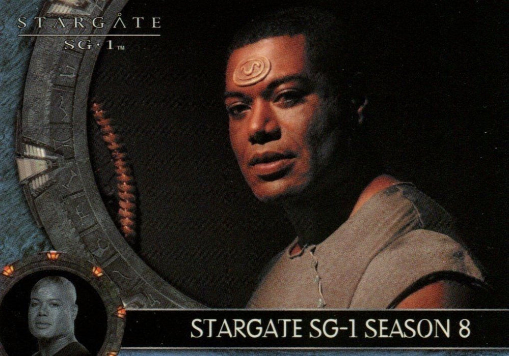 Stargate SG-1 Season 8 Card Album   - TvMovieCards.com