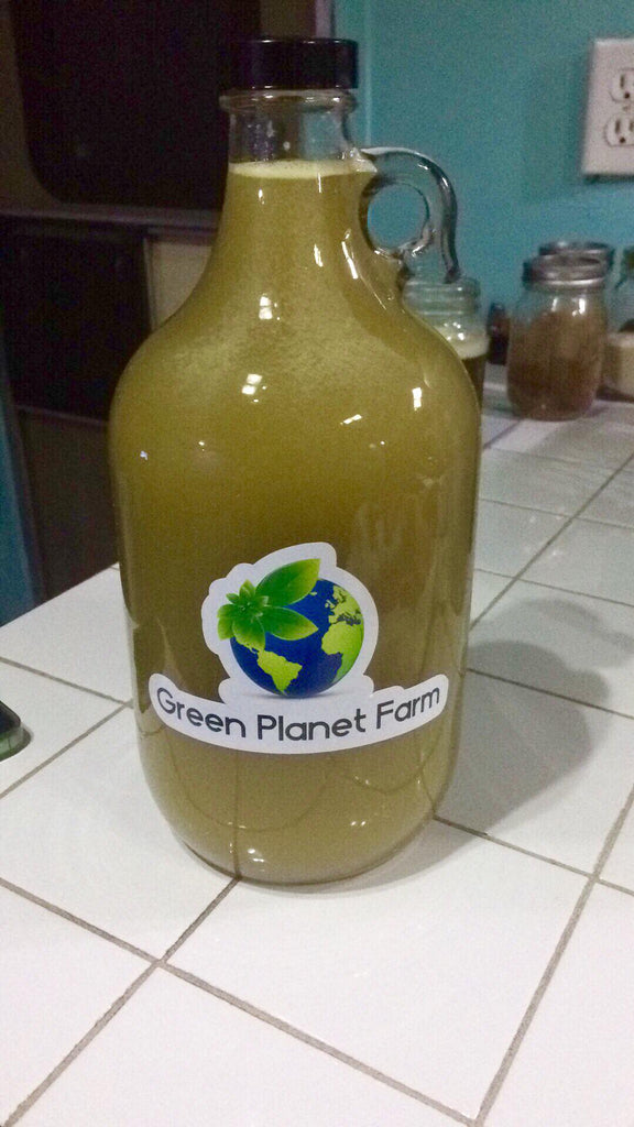 Sugar Cane Juice Club - 1/2gal Glass growler