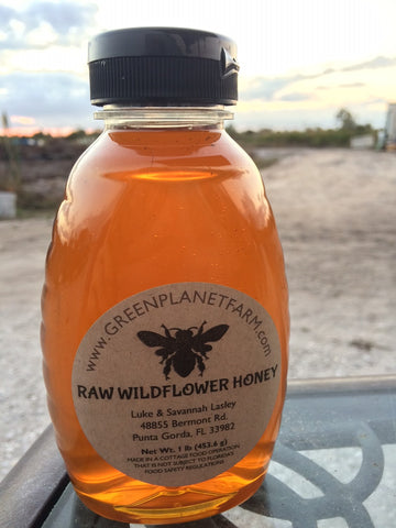1lb Raw Florida Wildflower Honey