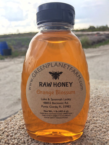 1lb Raw Orange Blossom Honey
