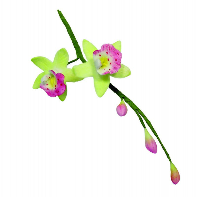 PME-Metal Flower/Leaves - Cymbidium Orchid