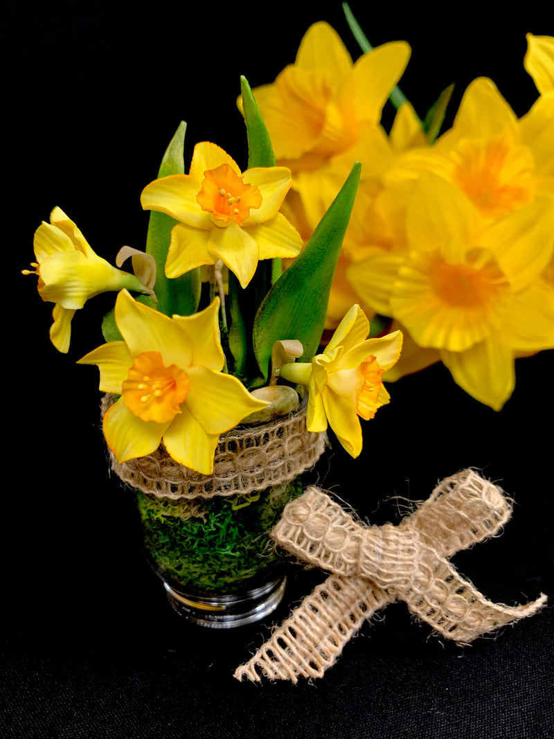 Miniature Daffodil Arrangment