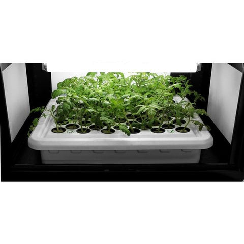 Hydroponic Cloner - SuperCloner 50-Site Hydroponic Cloner System