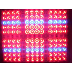 LEDs - Apache Tech AT 120 Red And Blue LED Grow Light