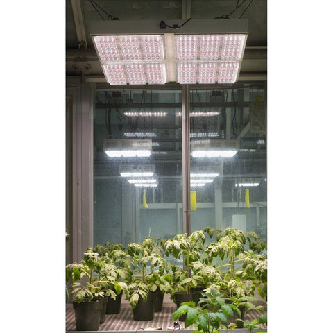 LEDs - Apache Tech AT 600 LED Grow Light