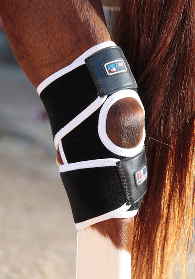 Magni-Teque Magnetic Hock Boots, Magnetic Horse Therapy, Premier Equine - Laura's Tack Room