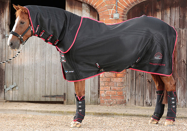 Nano-Tec Infrared Therapy Rug, Infrared Horse Therapy, Premier Equine - Laura's Tack Room