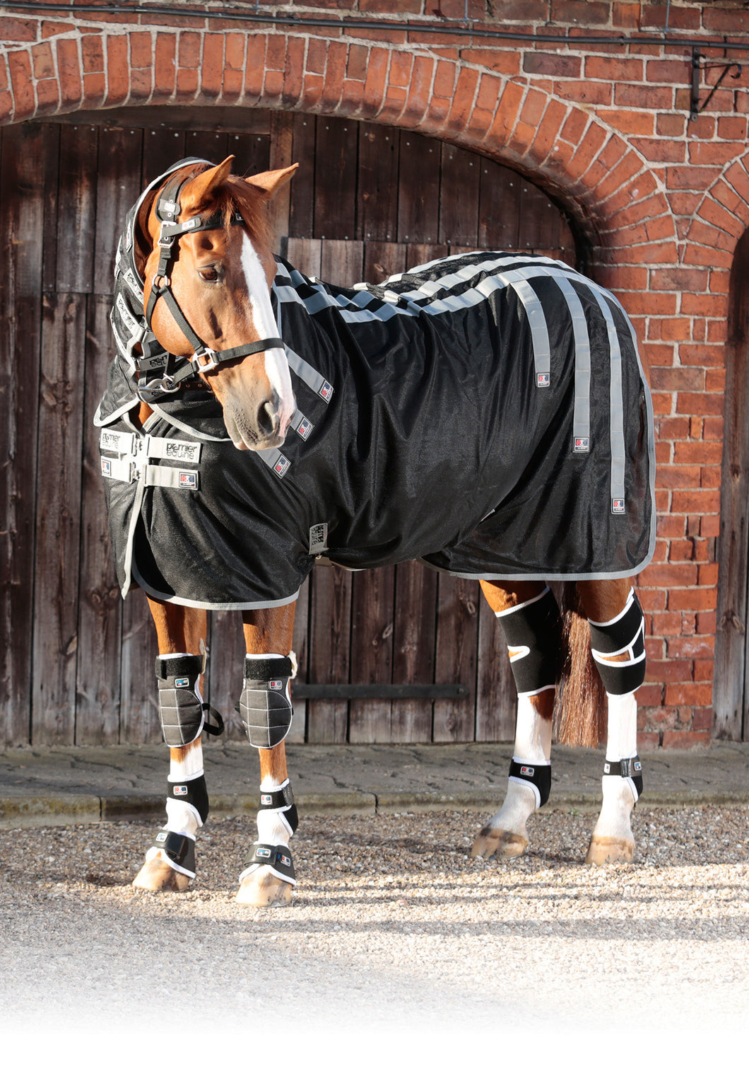 Magni-Teque Magnetic Rug + Neck Cover, Magnetic Horse Therapy, Premier Equine - Laura's Tack Room