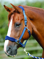 Fleece Padded Halter By Premier Equine - Deep blue