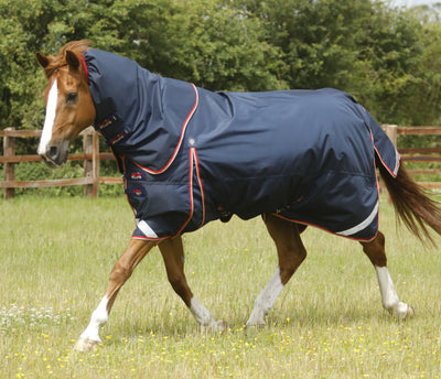 Buster Zero 100g Horse Turnout Rug, Winter Horse Blanket, Premier Equine - Laura's Tack Room