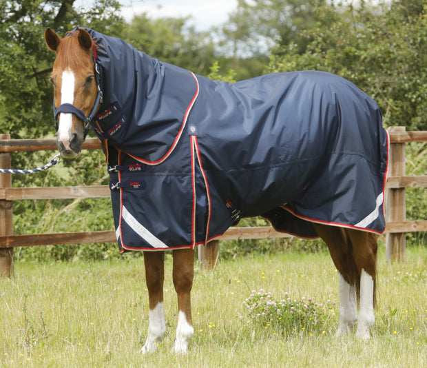 Buster Dual Complete 2 in 1 Turnout Rug, Winter Horse Blanket, Premier Equine - Laura's Tack Room