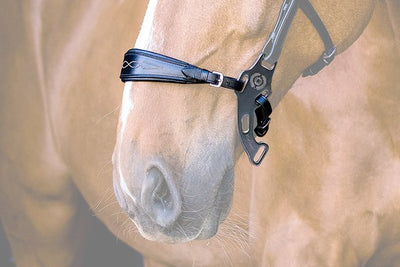 Hackamore Noseband, Noseband, Ps of Sweden - Laura's Tack Room
