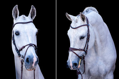 HvE Bridle bridle, Snaffle Bridle, Ps of Sweden - Laura's Tack Room